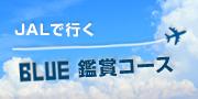 JAL東北応援プロジェクト 行こう!東北へ
